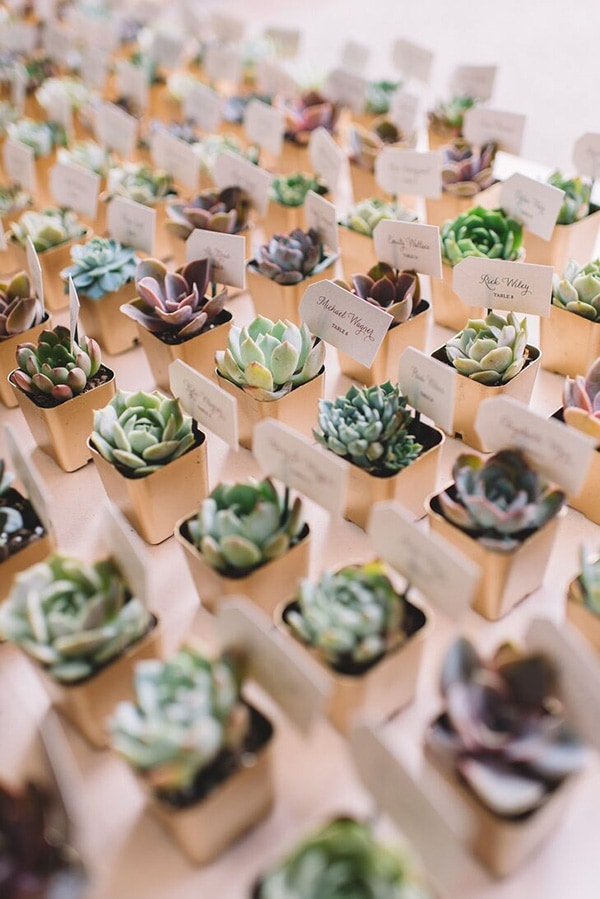 Eco-friendly potted succulent wedding favours that double as wedding reception escort cards for guests | Adam Kennedy Photography via The Knot