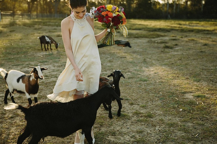 Colourful Farm Wedding Inspiration   Across the Forest