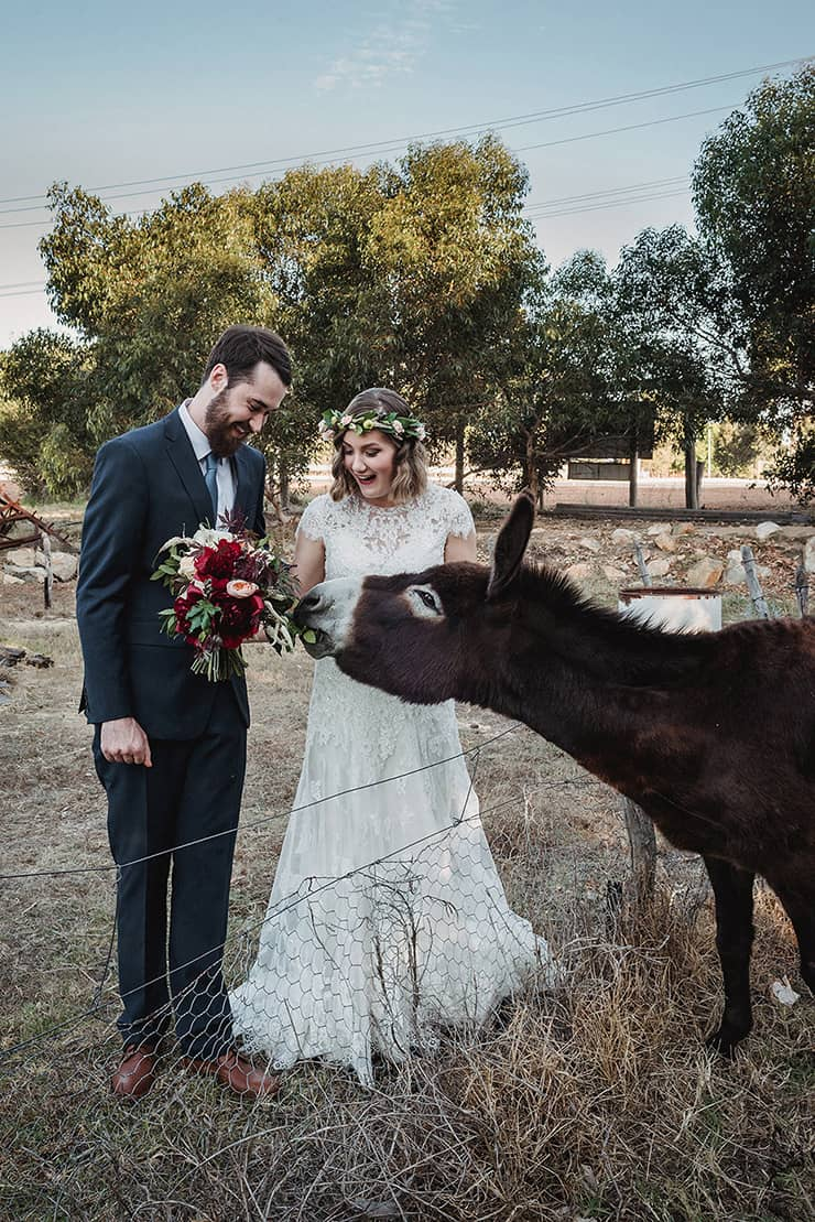 Rich-Berry-and-Navy-Rustic-Wedding-Bride-Groom-Donkey