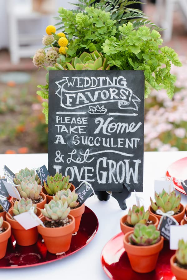 Succulent Wedding Favours Sign | Mirelle Carmichael Photography via The Frosted Petticoat